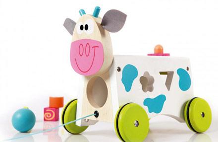 Aktivnostna kravica